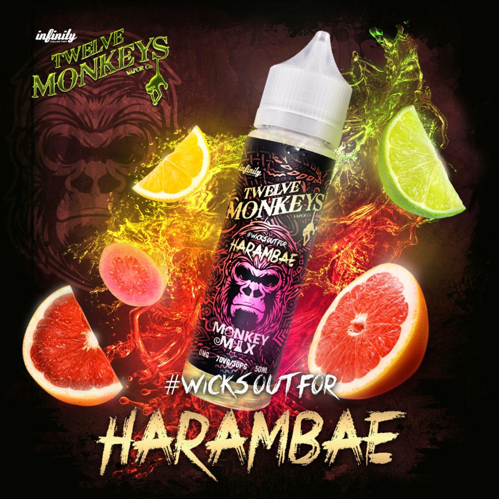 Harambae Twelve Monkeys E-Liquid Artwork